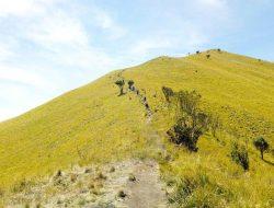 Ini Dia Jalur Pendakian Gunung Merbabu yang Kembali Dibuka